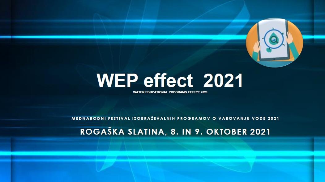 Festival WEP effect 2021